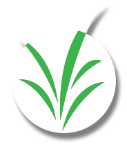 Grass icon for Delaware Valley Turf