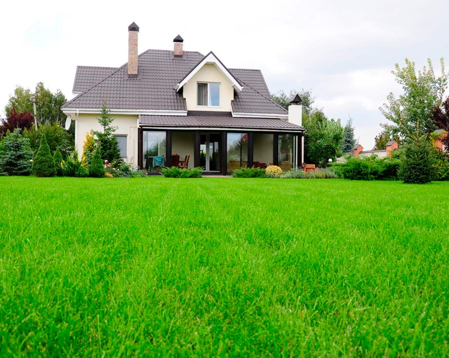 A perfectly cared for lawn in Malvern PA by the experts at Delaware Valley Turf