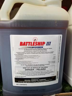 Battleship 3 sold by the experts at Delaware Valley Turf in Malvern PA