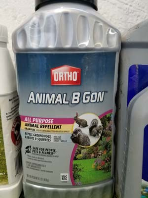 Rodent Repellent product