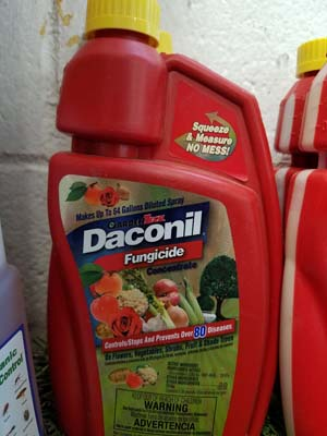 Daconil Fungicide sold by the experts at Delaware Valley Turf in Malvern PA