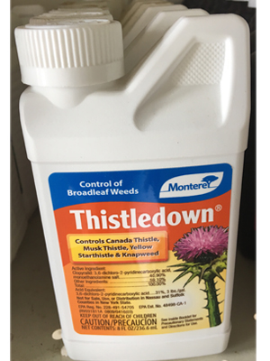 Thistledown sold by the professionals at Delaware Valley Turf in Bryn Mawr PA