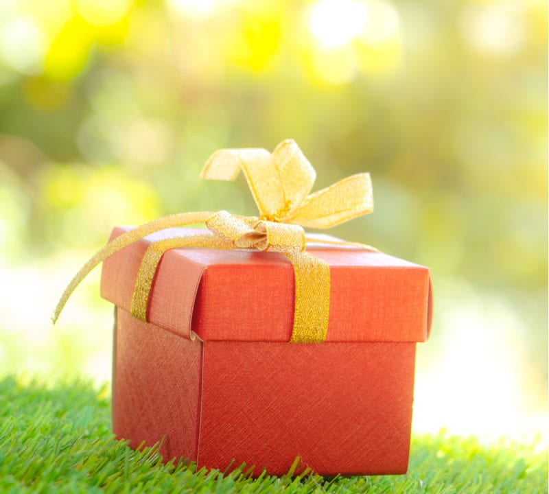 Give the best holiday gift this year with a custom lawn care program from Delaware Valley Turf.