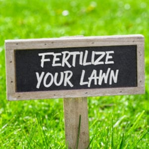 One of the most important 2020 lawn care tips is to provide your lawn with a fertilization schedule throughout the year for the best nutrition possible.